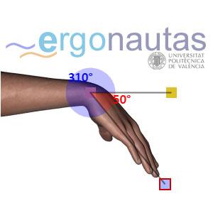 Ergonautas RULER - Medición de flexión de muñeca