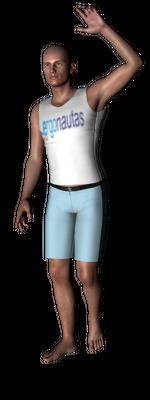 ergonautas - OWAS - Un brazo elevado.