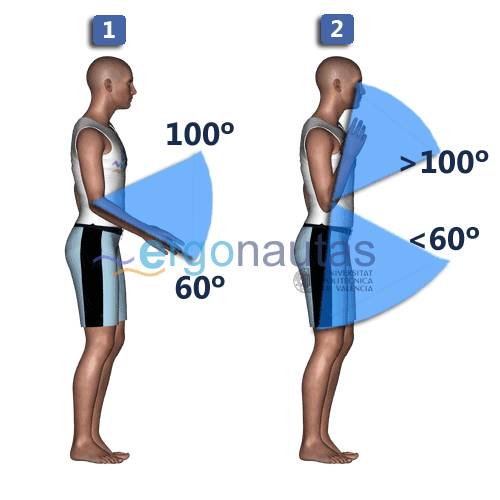 ergonautas- REBA - Puntuación del antebrazo