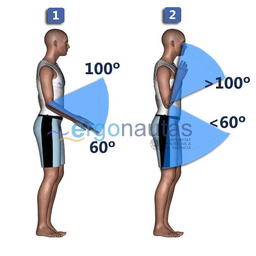 ergonautas - RULA - Puntuación del antebrazo