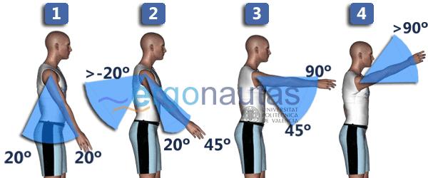ergonautas - RULA - Puntuación del brazo