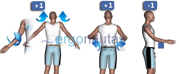 ergonautas - RULA - Modificación de la puntuación del brazo.