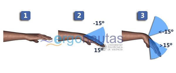 ergonautas - RULA - Puntuación de la muñeca