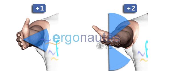 ergonautas - RULA - Puntuación del giro de muñeca.