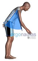 ergonautas - REBA, referencia brazo