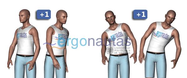 ergonautas - RULA - Modificación de la puntuación del tronco.