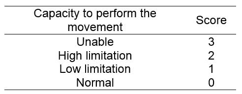 Score assigned to items according to worker's capacity to perform the movement.