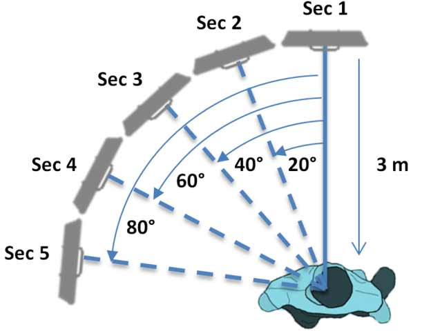 Location of the sensor for each motion sequence recorded.